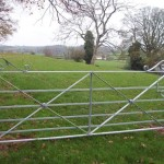 Iron Gates Railings12 0